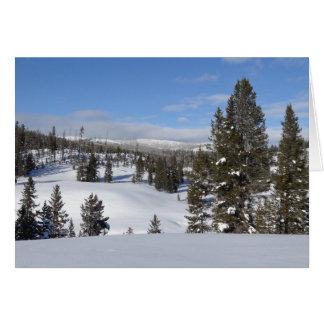Cartão Foto da paisagem do inverno de Yellowstone