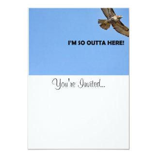 Cartão Foto do falcão