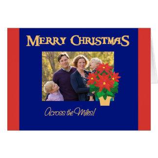 Cartão Foto vermelha do Natal das poinsétias através das