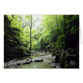 Cartão Fotografia de Cornualha do vale de Nectan da rua
