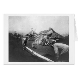 Cartão Fotografia de salto da cerca da zebra da equitação
