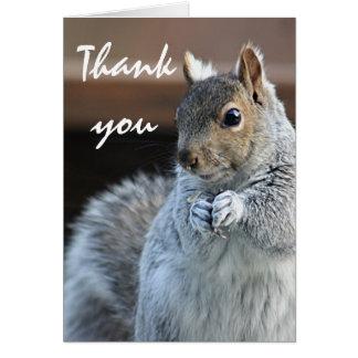 Cartão Fotografia do esquilo