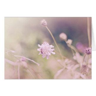 Cartão Fotografia do Pastel da flor e da abelha