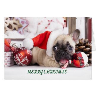Cartão Francês Bull do Feliz Natal