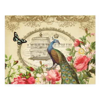 Cartão francês do pavão do vintage