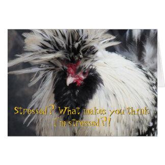Cartão Frazzled da galinha