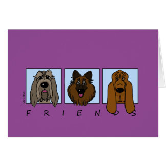 Cartão Friends: Spinone Italiano, Tervueren, Bloodhound