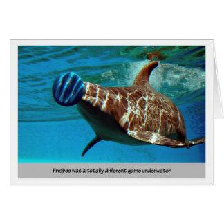 Cartão Frisbee do golfinho