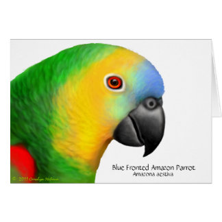 Cartão fronteado azul do papagaio de Amazon