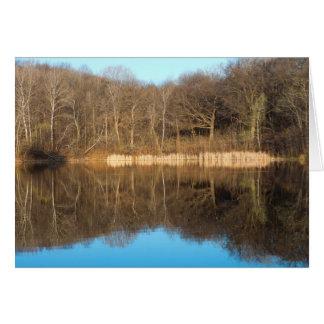 Cartão Fulgor da manhã do parque e da lagoa de Marthaler