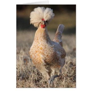 Cartão Funky da galinha