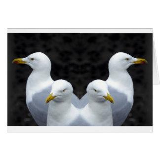 Cartão Gaivota, gaivota, gaivota