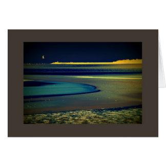 Cartão Gaivota no beira-mar