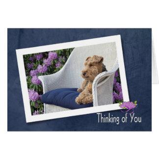 Cartão Galês Terrier que pensa de você