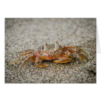 Cartão Garras do caranguejo