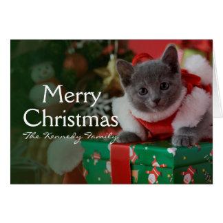 Cartão Gatinho azul e Natal do russo