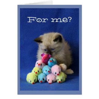 Cartão Gatinho Cruz-Eyed com ratos do brinquedo