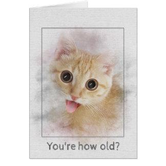Cartão Gatinho do gato malhado do aniversário