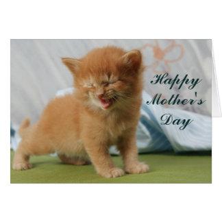 Cartão Gatinho feliz do dia das mães