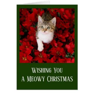 Cartão Gatinho minúsculo cercado por poinsétias vermelhas