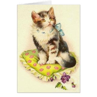 Cartão Gato bonito no travesseiro