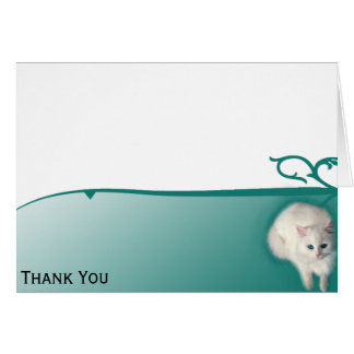 Cartão Gato branco com olhos de turquesa