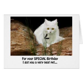 Cartão gato branco e libélula colhidos, texto do