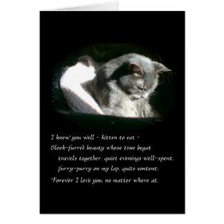 Cartão Gato cinzento triste do gatinho da simpatia do