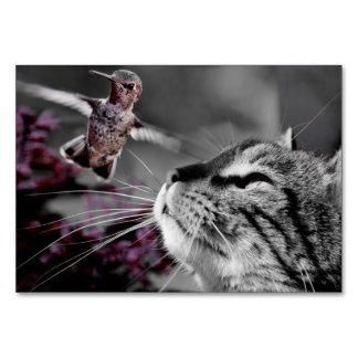 Cartão Gato com pássaro