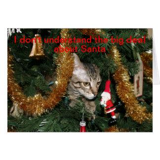 Cartão Gato confuso do Natal