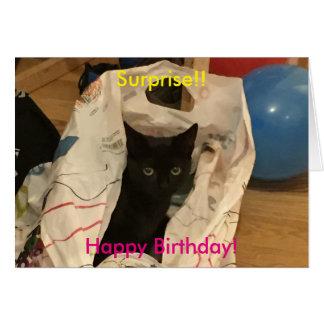 Cartão Gato da surpresa na imagem do saco