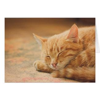Cartão Gato de gato malhado alaranjado do sono