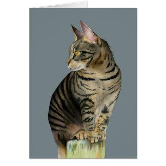 """Cartão """"Gato de gato malhado da vigia"""" na ilustração de"""
