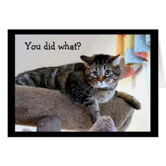 Cartão Gato de gato malhado virado