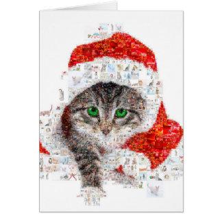 Cartão gato de Papai Noel - colagem do gato - gatinho -