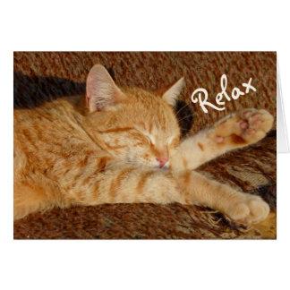 Cartão Gato de relaxamento