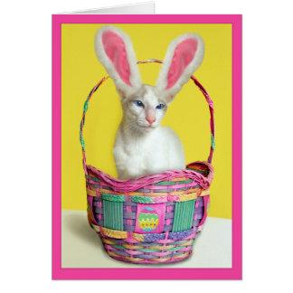 Cartão Gato do coelho de felz pascoa