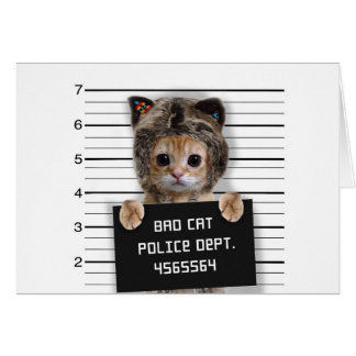 Cartão gato do mugshot - gato louco - gatinho - felino