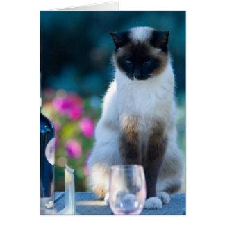 Cartão Gato do vinho