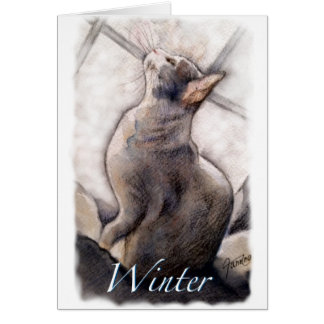 Cartão Gato em uma série da janela: Inverno
