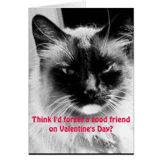 Cartão Gato engraçado do dia dos namorados para amigos
