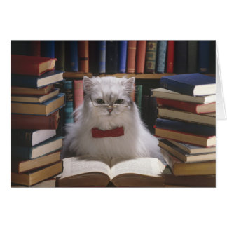 Cartão Gato esperto da graduação