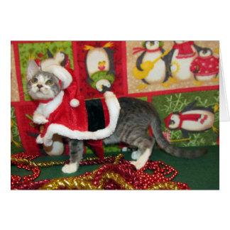 Cartão Gato, gatinho, Natal, salvamento, foto