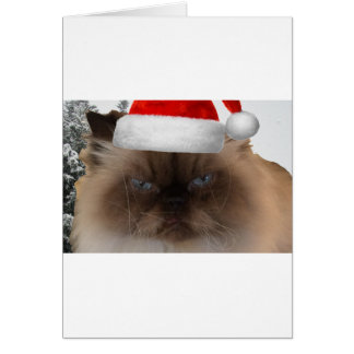 Cartão Gato mal-humorado do Natal