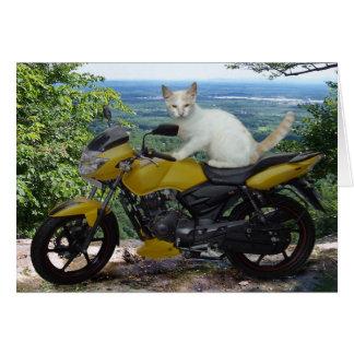 Cartão Gato Notecard do motociclista