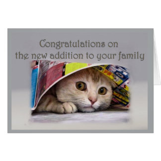 Cartão Gato novo Addtion à família