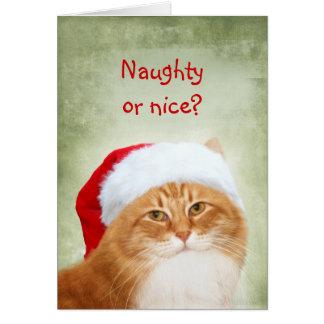 Cartão Gato Papai Noel