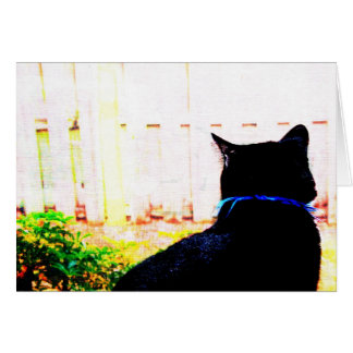 Cartão Gato preto da parte traseira que olha para fora a