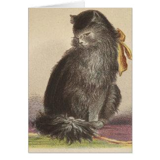 Cartão Gato preto de cabelos compridos