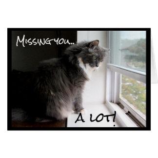 Cartão Gato que olha para fora a janela